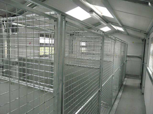 Dog Kennels interior